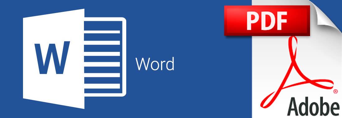 Curriculum Vitae in Word o in PDF