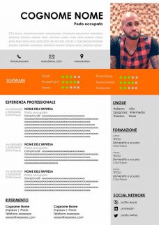 curriculum da compilare gratis infografico
